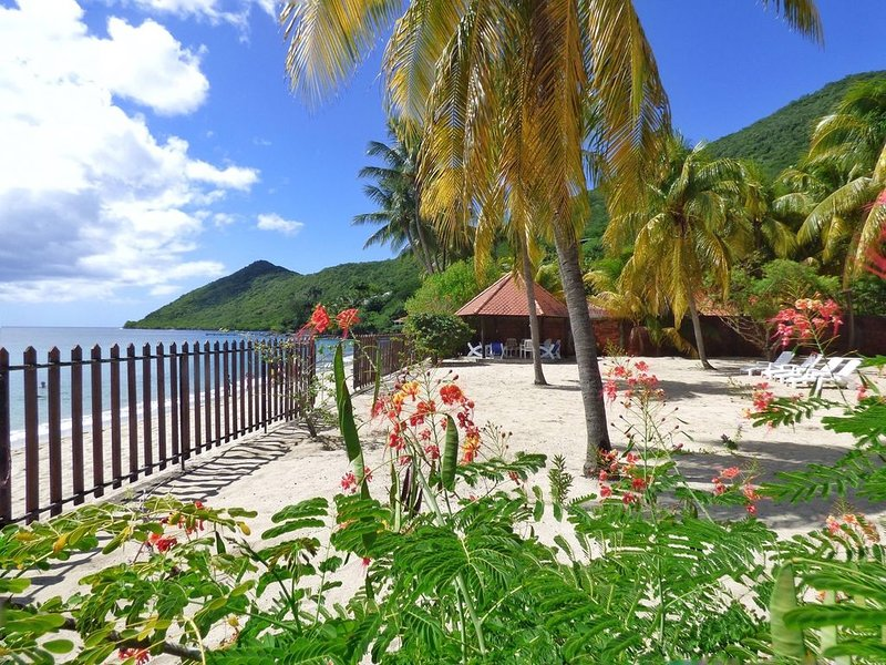 Villa Creole and coconut garden located on the beach of Grande Anse. WIFI, location de vacances à Les Anses d'Arlet