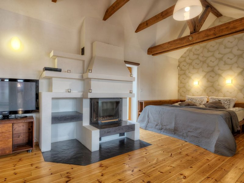 Magnificent space & position in a historical building in the centre of the city, holiday rental in Prague