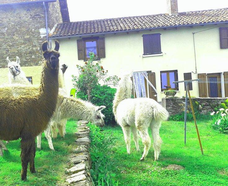 Gite nature Lamalpapoche entouré par les animaux de la ferme., location de vacances à Bessonies