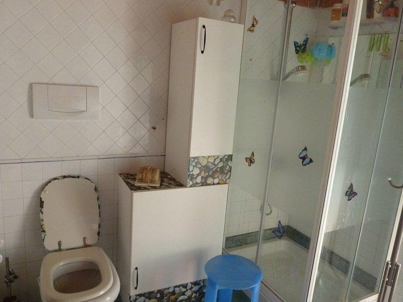 Casa a solo 3 Km dalle spiagge Versiliesi, holiday rental in Capezzano Pianore