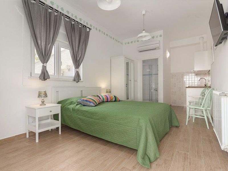 Appartmaneto per 2 persone con bagno e cucina privati, holiday rental in Marezige