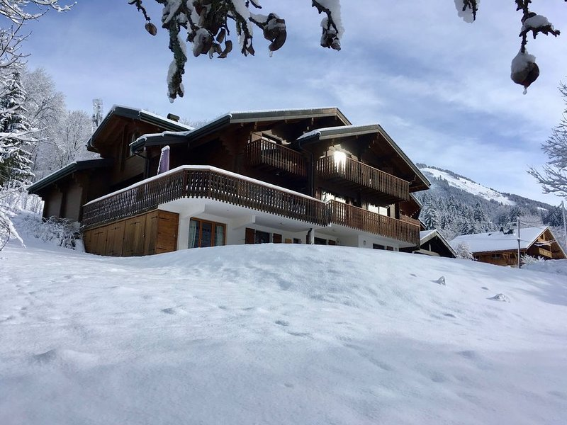 Luxury Catered Chalet with Amazing Hot-Tub, vacation rental in Abondance
