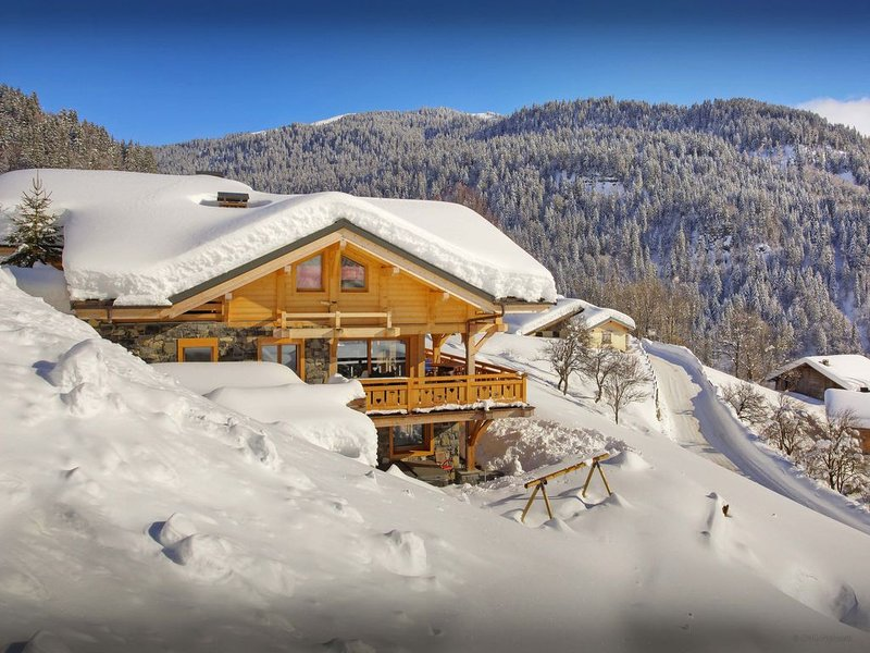 Skiez dans les Alpes depuis ce chalet neuf 4* avec jacuzzi - OVO Network, holiday rental in Savoie