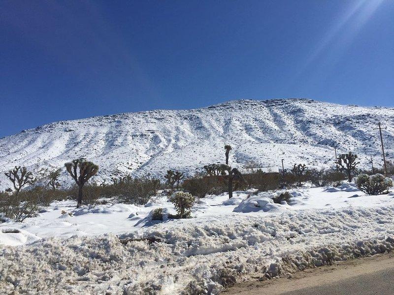 Neve na encosta no deserto!