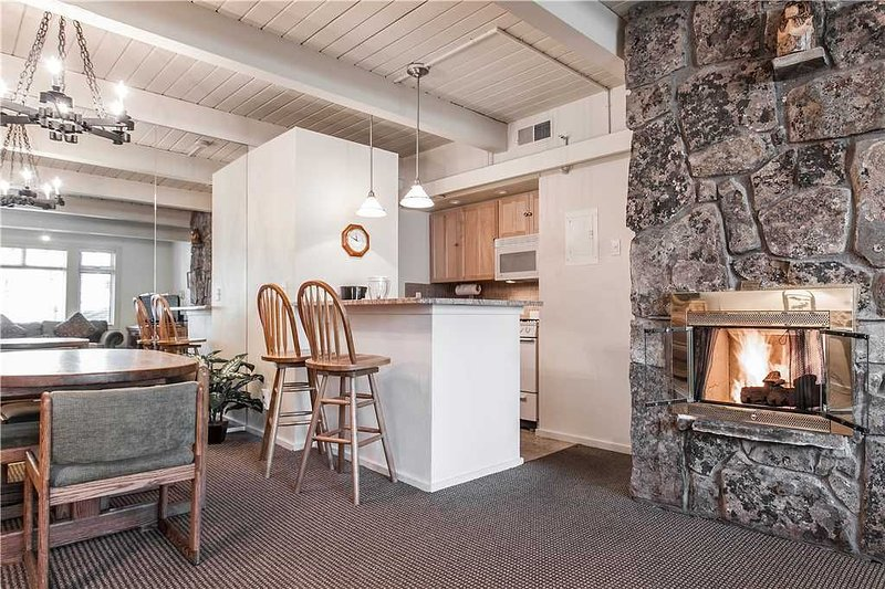 Click to Save 25% 1BD, 2BA in Snowmass ski-in ski-out, location de vacances à Snowmass Village