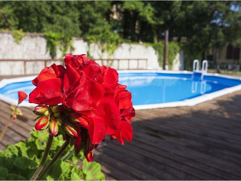 Agriturismo Villa Elvira - Villa storica isolata con piscina vicino a Pisa, vacation rental in Casciana Terme Lari