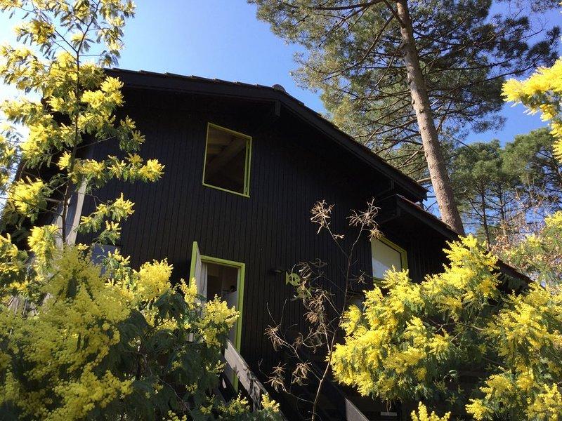 Chalet en bois sur le lac de Lacanau : un havre de paix en pleine nature..., holiday rental in Le Temple