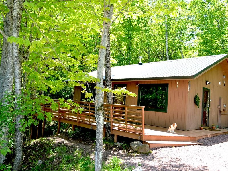 Beautiful Cabin in the Woods Near Bayfield, Next to Raspberry Bay, vacation rental in Bayfield