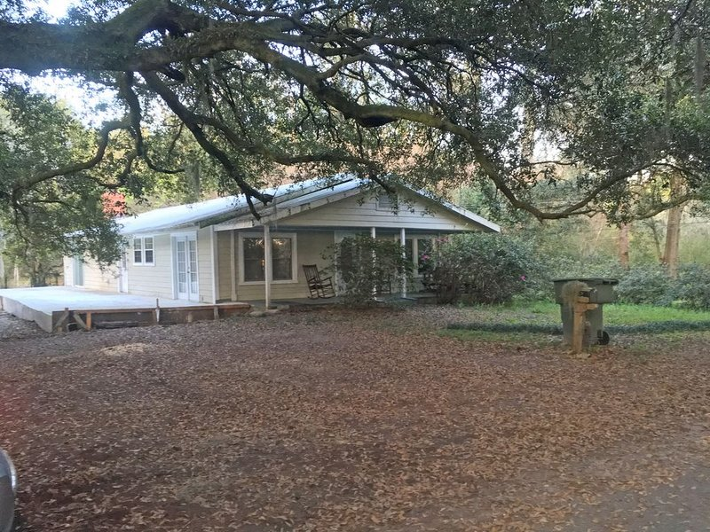 A comfortable home in a quiet neighborhood graced with Spanish Moss draped oaks., alquiler de vacaciones en Townsend