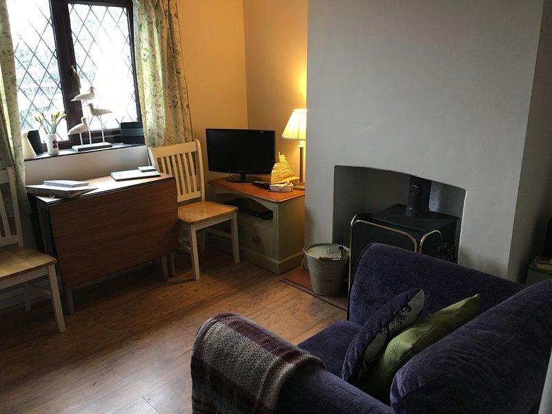 Super cozy lounge with log burner