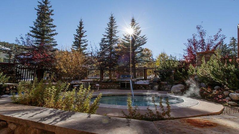Tucker Mountain Lodge Spa & Grill Area