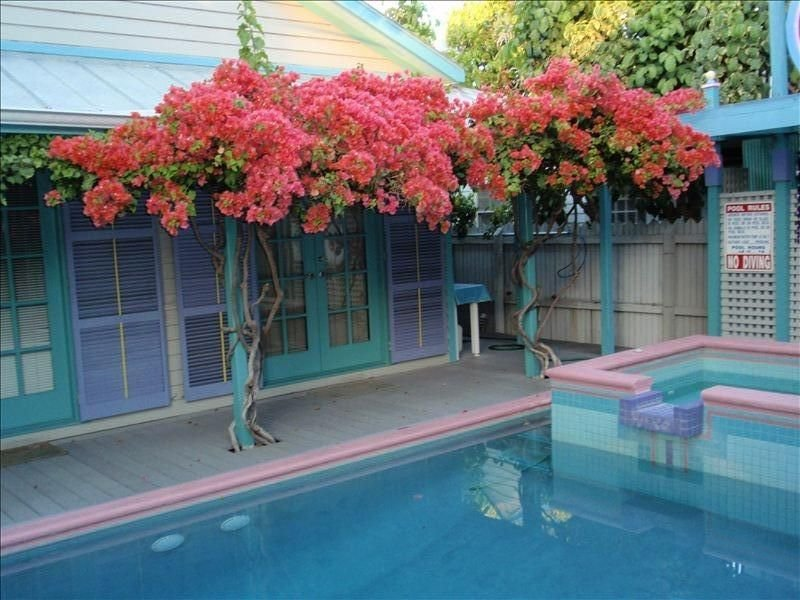 Architect's Personal Residence, Private Pool, 1 Blk. to Duval, holiday rental in Stock Island
