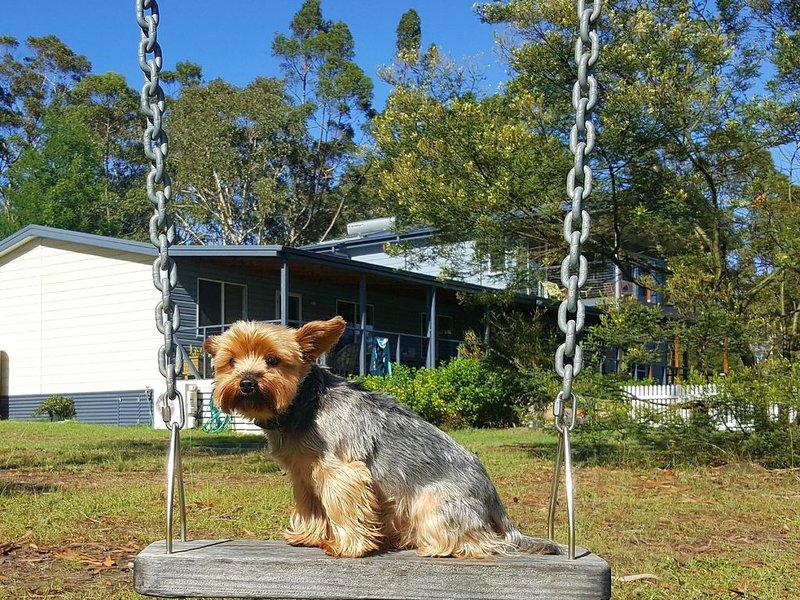 Finchley B&B - pets welcome, vacation rental in Wandandian