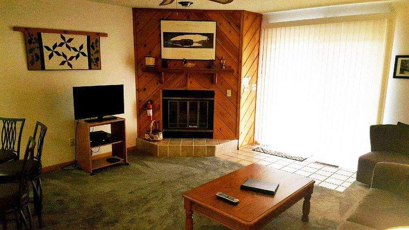 1 bedroom accommodation in Wisconsin Dells, holiday rental in Briggsville