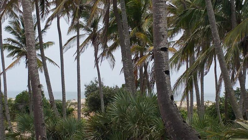 Morrumbene Beach Resort, vacation rental in Inhambane Province
