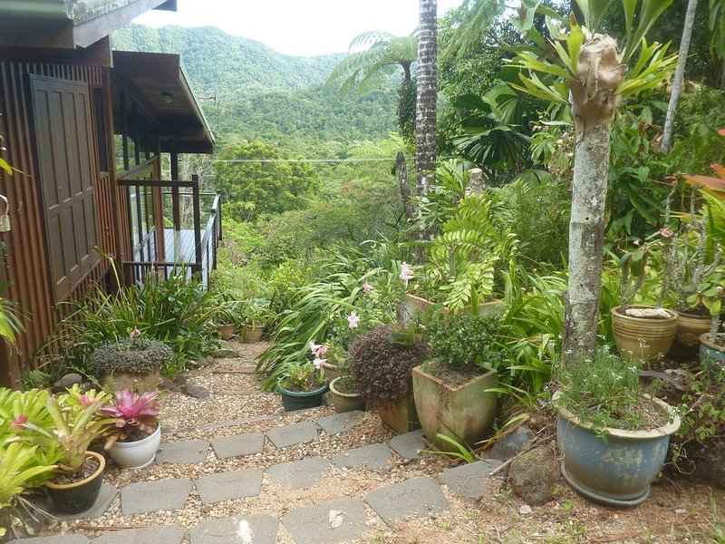 Daintree Holiday Homes - The Folly - A Nature Retreat in The Daintree, location de vacances à Cap Tribulation