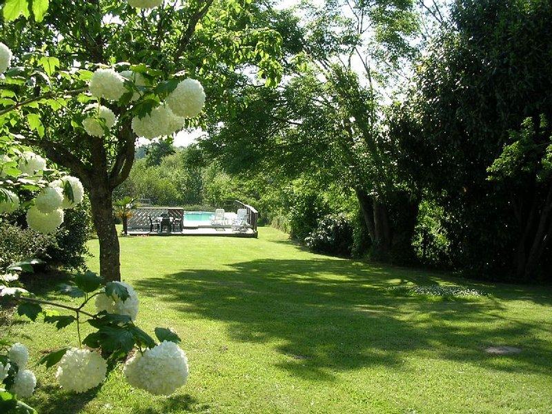 jardin hacia la piscina