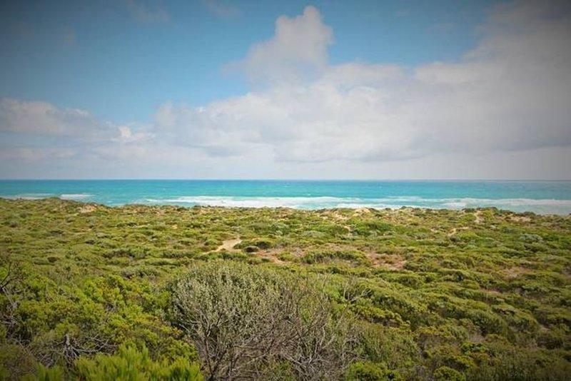 Wirramirra on the Ocean, vacation rental in Cape Schanck