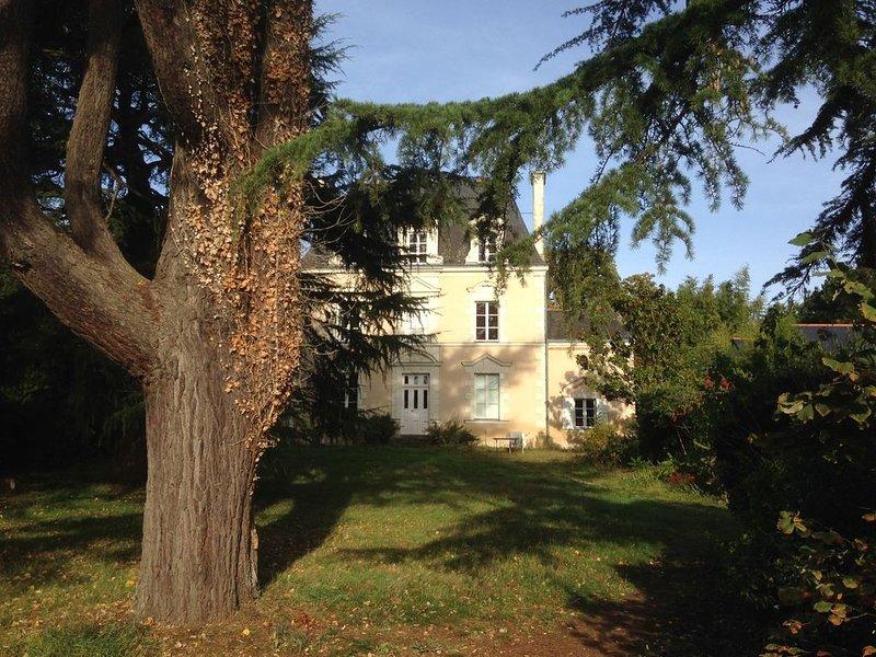 Belle demeure 19ème siècle en bord de rivière, rénovée . calme assuré, holiday rental in Saint-Aubin-de-Luigne