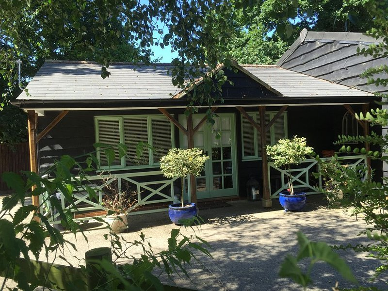 Studio Barn In The New Forest, vacation rental in Sway