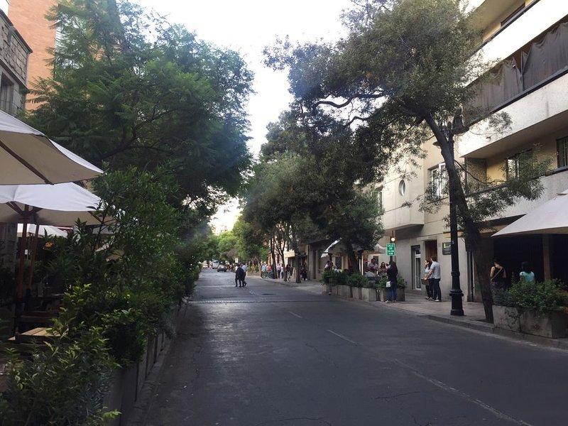 General view of Lastarria street