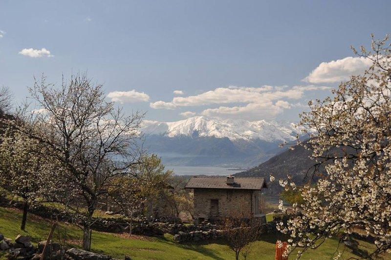 Verceia Baita Caterina località Mongone, aluguéis de temporada em Province of Sondrio