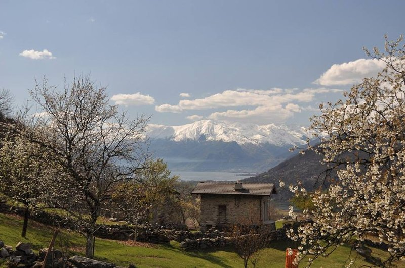 Verceia Baita Caterina località Mongone, vacation rental in Borgonuovo