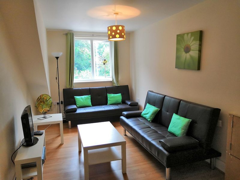 The Hinckley By Serene Stays, vacation rental in Leicester