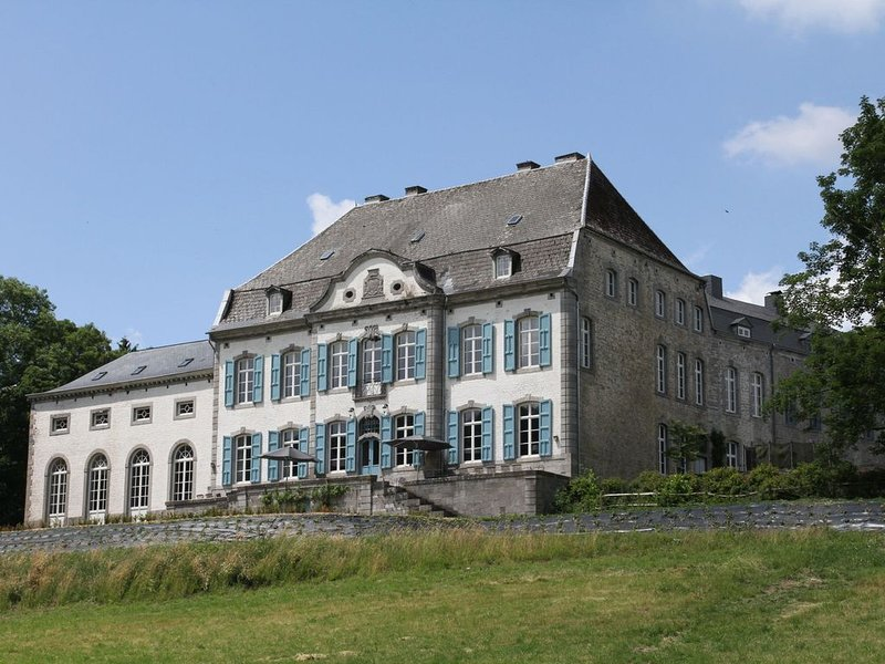 Lavish Castle with Sauna and Gym in Vyle-Et-Tharoul, location de vacances à Hamois