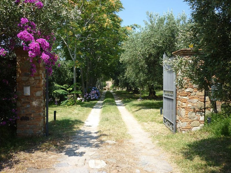 La casa di Gilda b&b, holiday rental in Gizzeria Lido