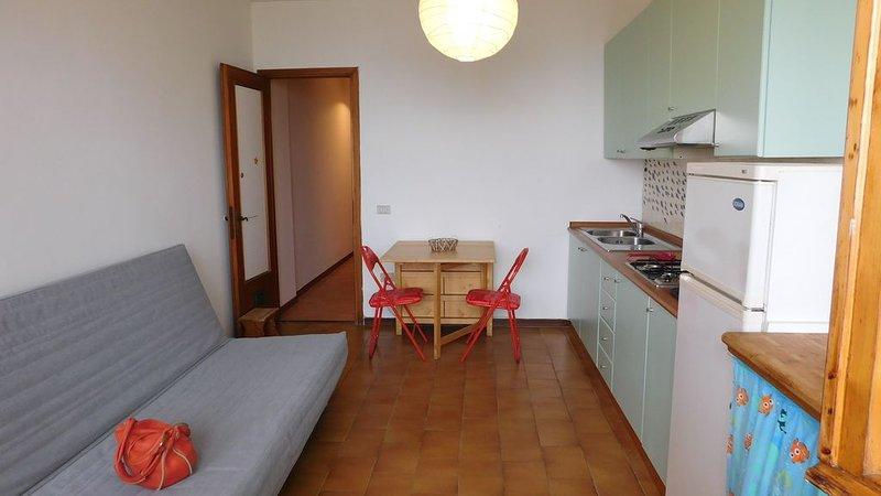 Sea scent, lovely seafront apartment, alquiler vacacional en Marina di Pisa