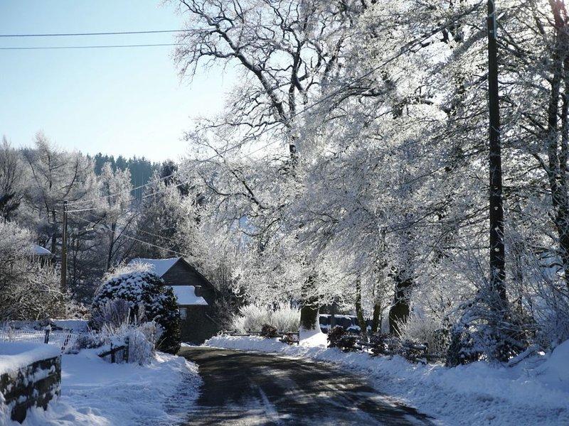Entorno inmediato [invierno] (<1 km)