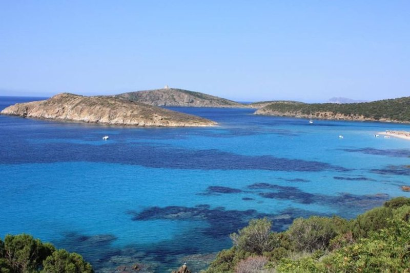 Masainas: BELLISSIMA VILLETTA IMMERSA IN PARCO DI ULIVETI A 900 MT. DAL MARE, vacation rental in Province of Carbonia-Iglesias