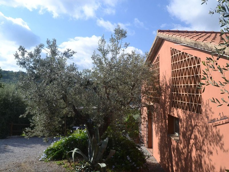 Peaceful Holiday Home in Castagneto Carducci with Garden, vacation rental in Castagneto Carducci