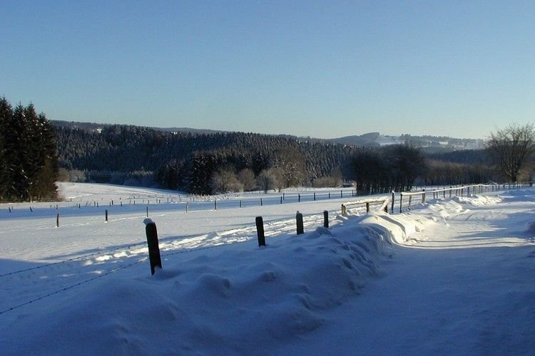 Dintorni immediati [inverno] (<1 km)