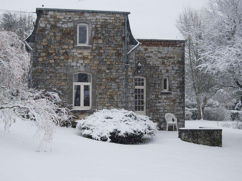 Garden [winter]