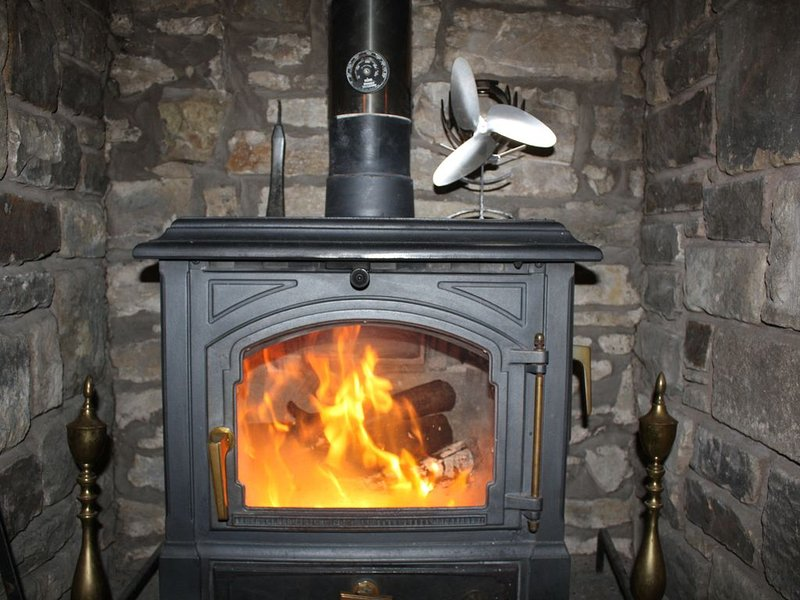 Log Burner - Logs Inclusive