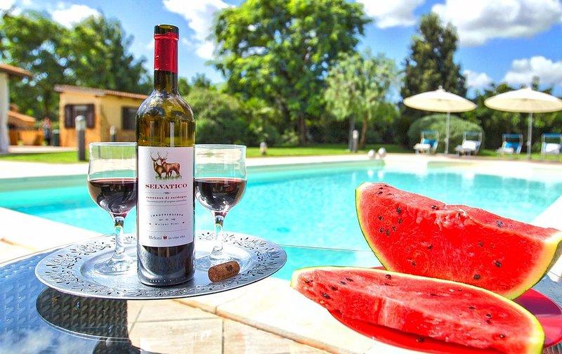Alghero Villa Paradiso con campo da tennis lusso e privacy per 12 persone, holiday rental in Olmedo