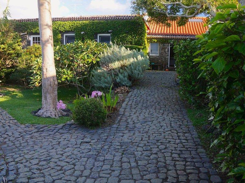 Garden - paths