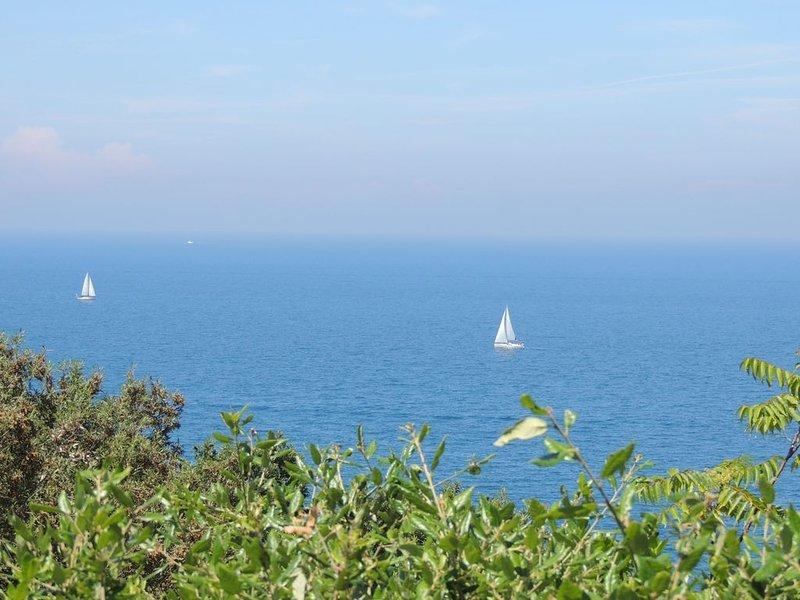 Ampio monolocale vista mare, holiday rental in Biodola