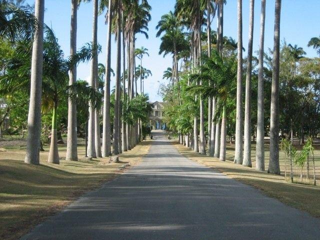 Road to Codrington College