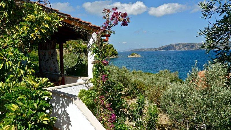 ALOE II - Flower Houses in Alonissos island, holiday rental in Agios Petros