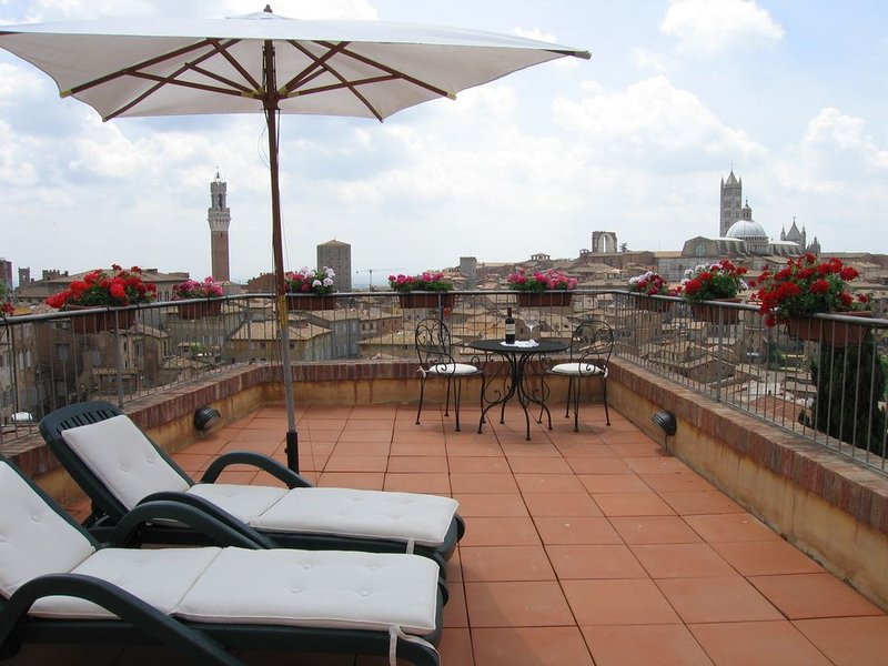'Tuscanflat,SienaVistas' in Siena City with spectacular terraces on all old city, holiday rental in Moltacino