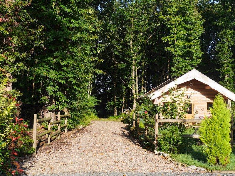 Gîte en rondin de bois, holiday rental in Brionne