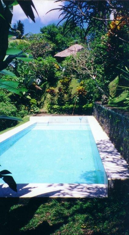 Pool (very private, spring-fed, 12.5 meters X 4.5 meters)