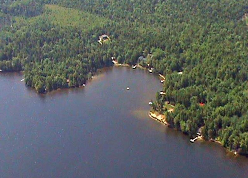 Aerial view of our 'cookie bite' cove on George's Pond.