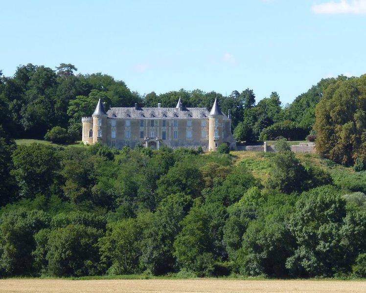 Gite chateau de La Flotte, location de vacances à Monthodon