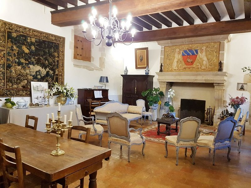 Chateau/Manoir  16ème siecles restauré, holiday rental in La Suze-sur-Sarthe