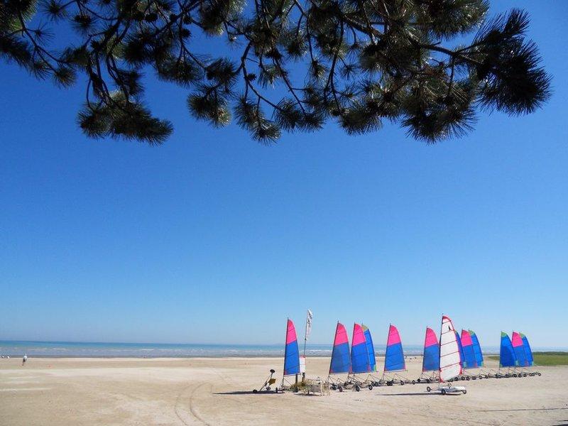 dans Baie du Mt. ST. MICHEL  joli gite 35m2, calme/ sauna privé, 50m mer, location de vacances à Dol-de-Bretagne