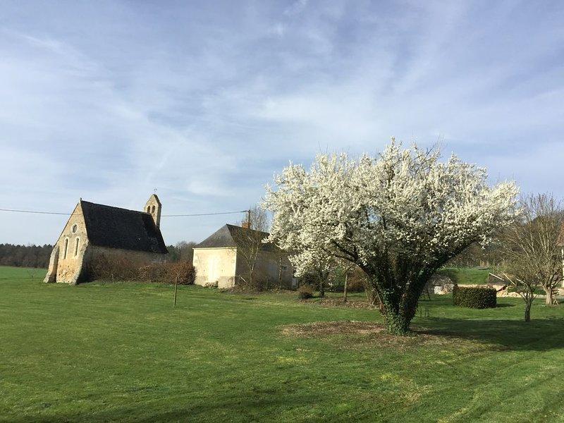 Maison de campagne proche des 24 heures du Mans et du Zoo de La Flèche, holiday rental in La Fleche